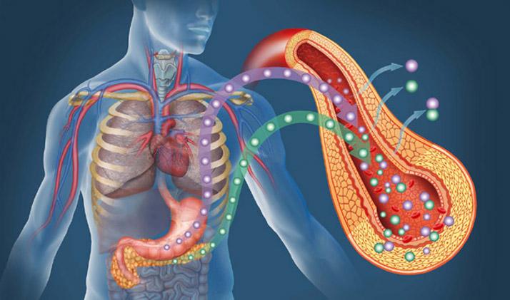 arginina a srodblonek naczyniowy